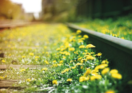 voestalpine Railway Systems values - sustainability